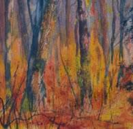 Flame-Trees-Mellow-Crest-Leanne-Jones