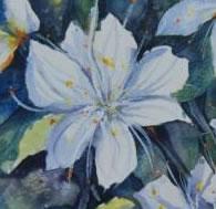 Shades-of-White-leanne-jones-mellowcrest-gallery